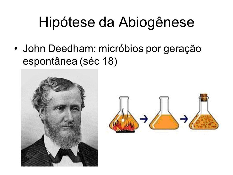 Hipótese da Abiogênese John Deedham: micróbios por geração espontânea (séc 18)