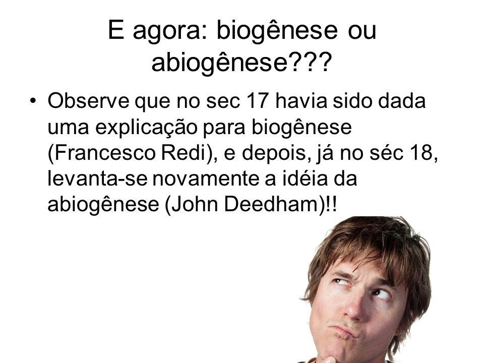 E agora: biogênese ou abiogênese??.