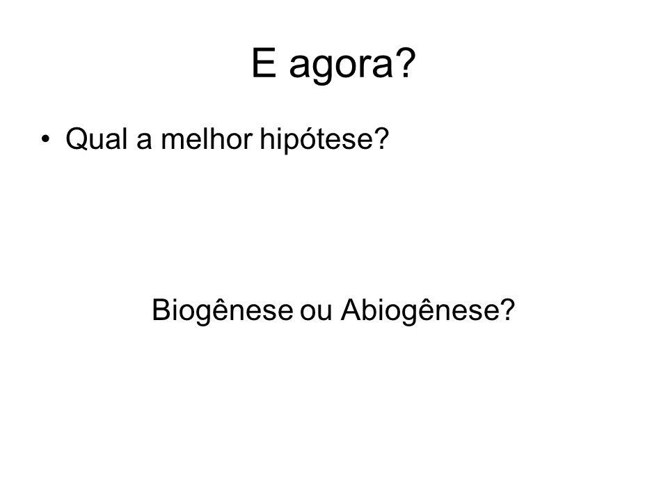 E agora? Qual a melhor hipótese? Biogênese ou Abiogênese?