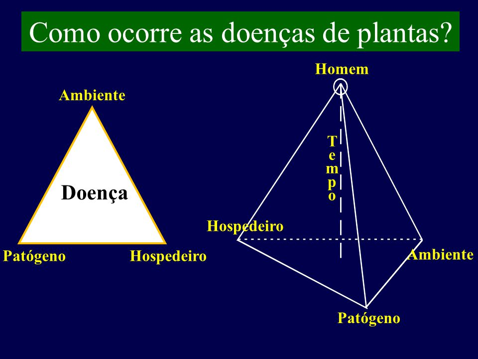 Como ocorre as doenças de plantas.