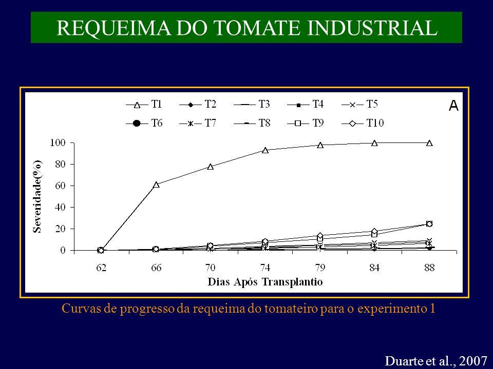 REQUEIMA DO TOMATE INDUSTRIAL Duarte et al., 2007 Curvas de progresso da requeima do tomateiro para o experimento 1