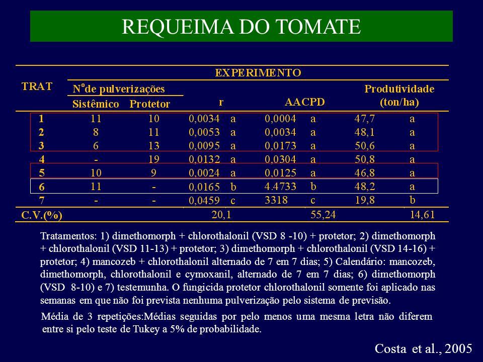 REQUEIMA DO TOMATE Costa et al., 2005 Tratamentos: 1) dimethomorph + chlorothalonil (VSD 8 -10) + protetor; 2) dimethomorph + chlorothalonil (VSD 11-13) + protetor; 3) dimethomorph + chlorothalonil (VSD 14-16) + protetor; 4) mancozeb + chlorothalonil alternado de 7 em 7 dias; 5) Calendário: mancozeb, dimethomorph, chlorothalonil e cymoxanil, alternado de 7 em 7 dias; 6) dimethomorph (VSD 8-10) e 7) testemunha.