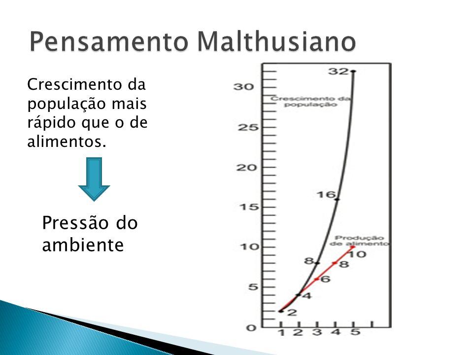 Ideias chave:  Variabilidade entre a mesma espécie.  Seleção Natural ( Pressão do Ambiente) Influência de Thomas Malthus.