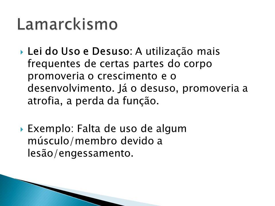  Prof.Dr. Roberto G. S. Berlinck, Instituto de Química de São Carlos, da USP.