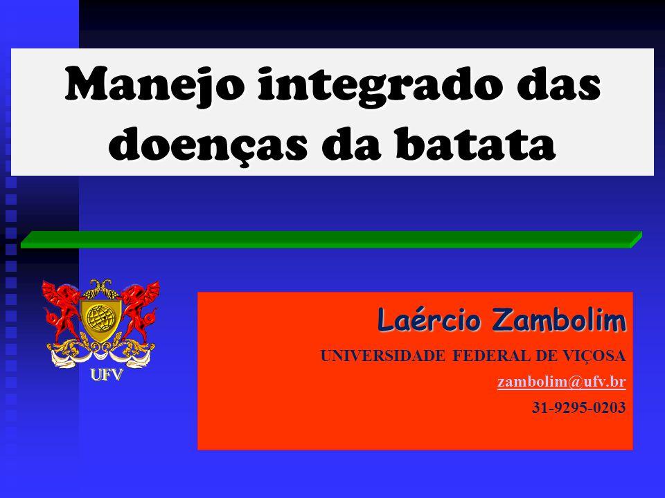 Laércio Zambolim UNIVERSIDADE FEDERAL DE VIÇOSA zambolim@ufv.br 31-9295-0203 Manejo integrado das doenças da batata UFV