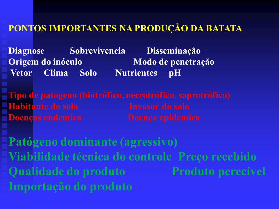 PONTOS IMPORTANTES NA PRODUÇÃO DA BATATA Diagnose Sobrevivencia Disseminação Origem do inóculo Modo de penetração Vetor Clima Solo Nutrientes pH Tipo de patogeno (biotrófico, necrotrófico, saprotrófico) Habitante do solo Invasor do solo Doenças endemica Doença epidemica Patógeno dominante (agressivo) Viabilidade técnica do controle Preço recebido Qualidade do produto Produto perecível Importação do produto