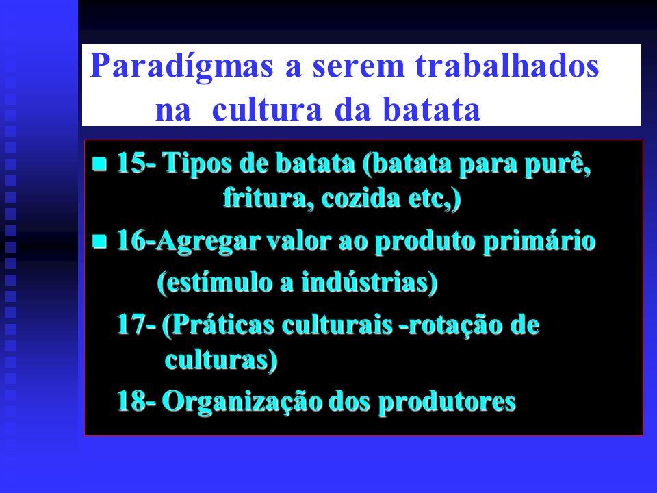Paradígmas a serem trabalhados na cultura da batata 15- Tipos de batata (batata para purê, fritura, cozida etc,) 15- Tipos de batata (batata para purê, fritura, cozida etc,) 16-Agregar valor ao produto primário 16-Agregar valor ao produto primário (estímulo a indústrias) 17- (Práticas culturais -rotação de culturas) 18- Organização dos produtores