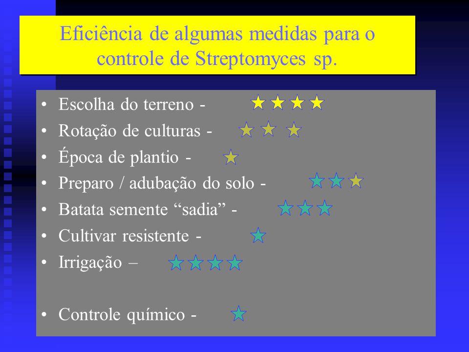 Eficiência de algumas medidas para o controle de Streptomyces sp.