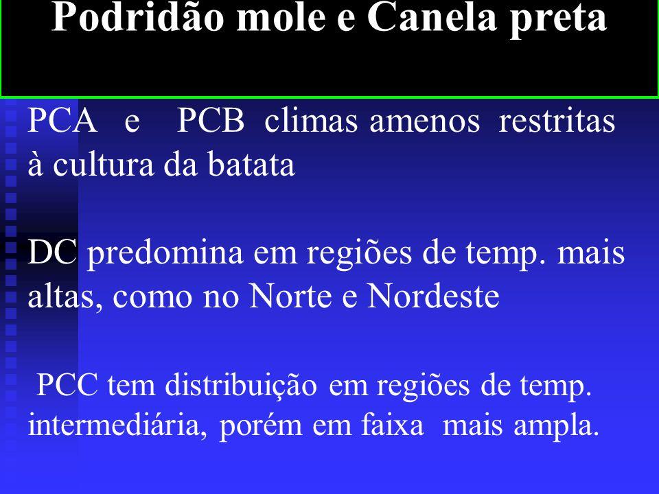 PCA e PCB climas amenos restritas à cultura da batata DC predomina em regiões de temp.