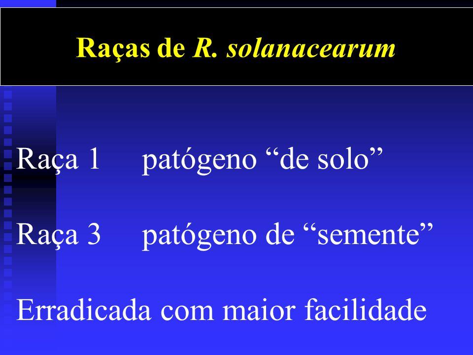 Raça 1 patógeno de solo Raça 3 patógeno de semente Erradicada com maior facilidade Raças de R.