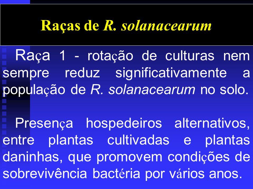 Ra ç a 1 - rota ç ão de culturas nem sempre reduz significativamente a popula ç ão de R.