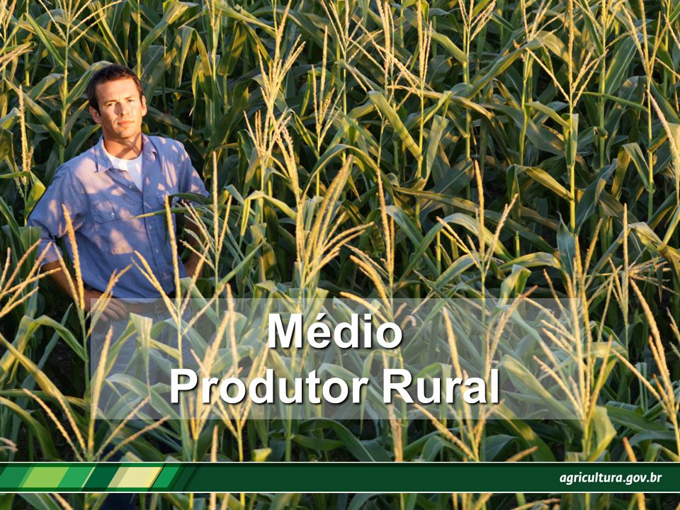 Médio Produtor Rural