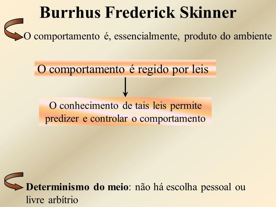 Burrhus Frederick Skinner Determinismo do meio: não há escolha pessoal ou livre arbítrio O comportamento é regido por leis O conhecimento de tais leis
