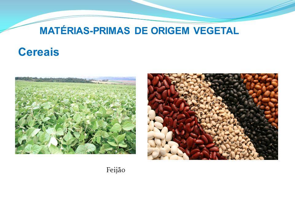 MATÉRIAS-PRIMAS DE ORIGEM VEGETAL Cereais Feijão