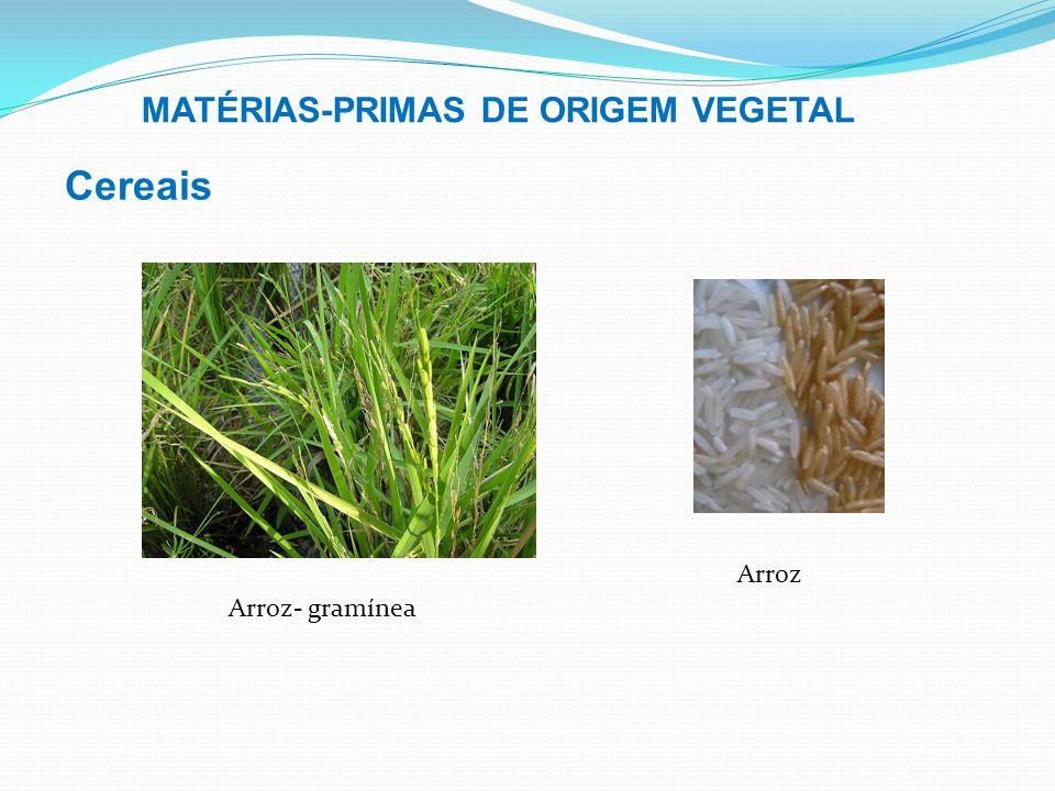 Cereais MATÉRIAS-PRIMAS DE ORIGEM VEGETAL Arroz Arroz- gramínea