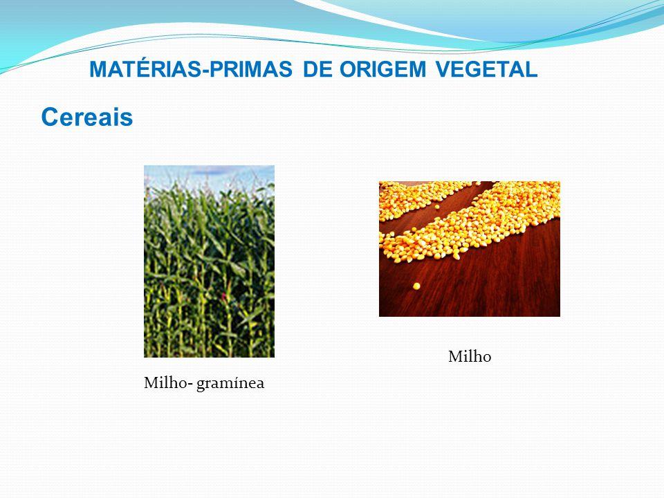 Cereais MATÉRIAS-PRIMAS DE ORIGEM VEGETAL Milho Milho- gramínea
