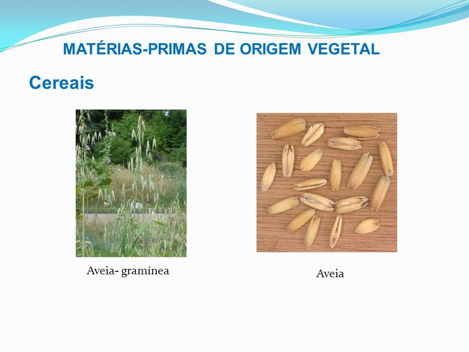 Cereais MATÉRIAS-PRIMAS DE ORIGEM VEGETAL Aveia Aveia- gramínea