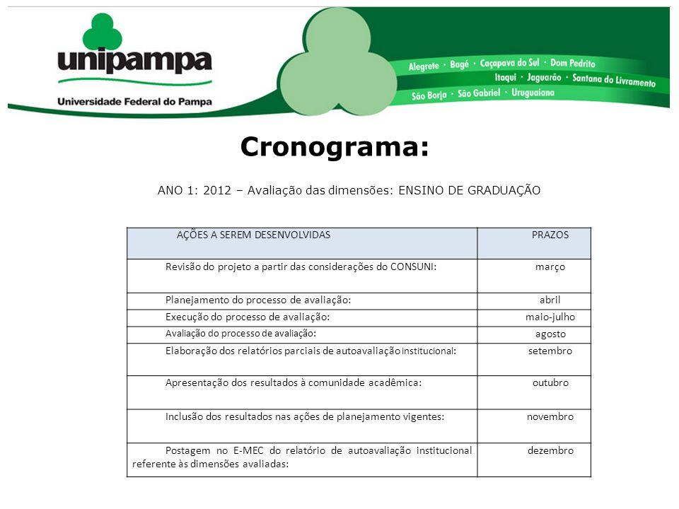 Cronograma: AÇÕES A SEREM DESENVOLVIDASPRAZOS Revisão do projeto a partir das considerações do CONSUNI:março Planejamento do processo de avaliação:abr