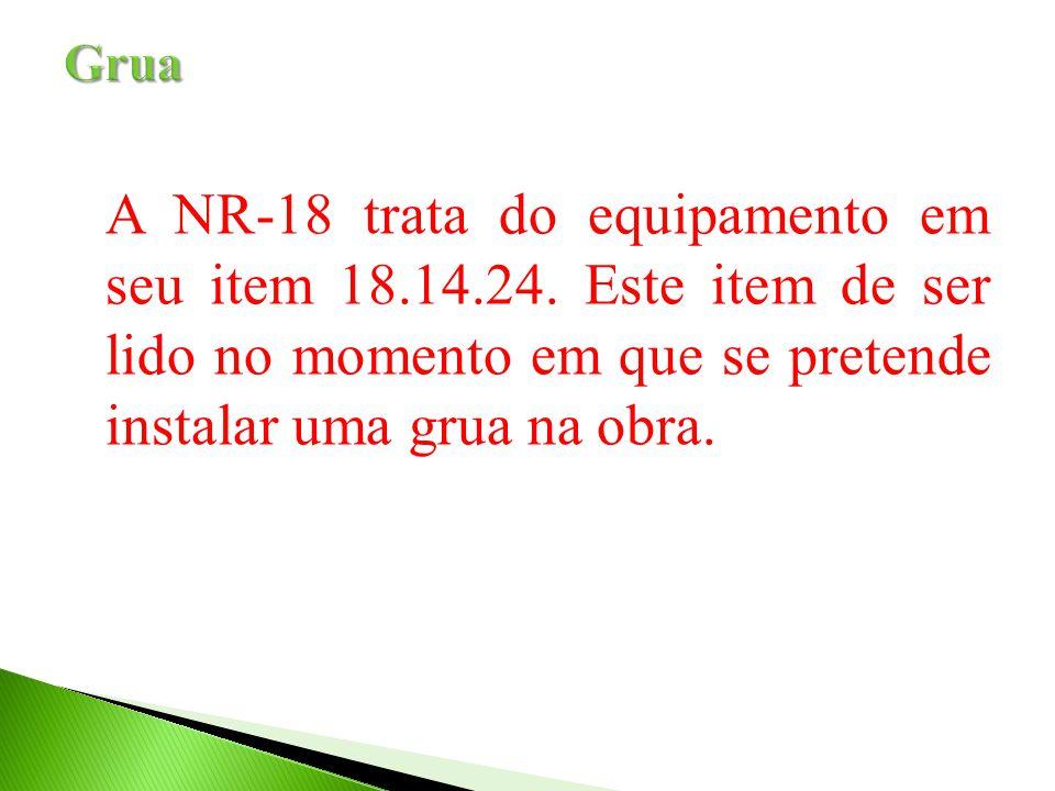 A NR-18 trata do equipamento em seu item 18.14.24. Este item de ser lido no momento em que se pretende instalar uma grua na obra.