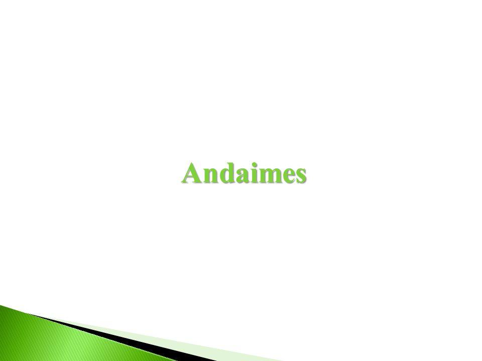 Andaimes