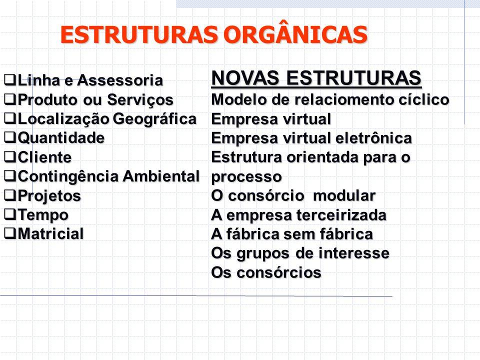 ESTRUTURAS ORGÂNICAS  Linha e Assessoria  Produto ou Serviços  Localização Geográfica  Quantidade  Cliente  Contingência Ambiental  Projetos 