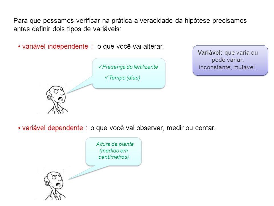 Para que possamos verificar na prática a veracidade da hipótese precisamos antes definir dois tipos de variáveis: variável independente :o que você va