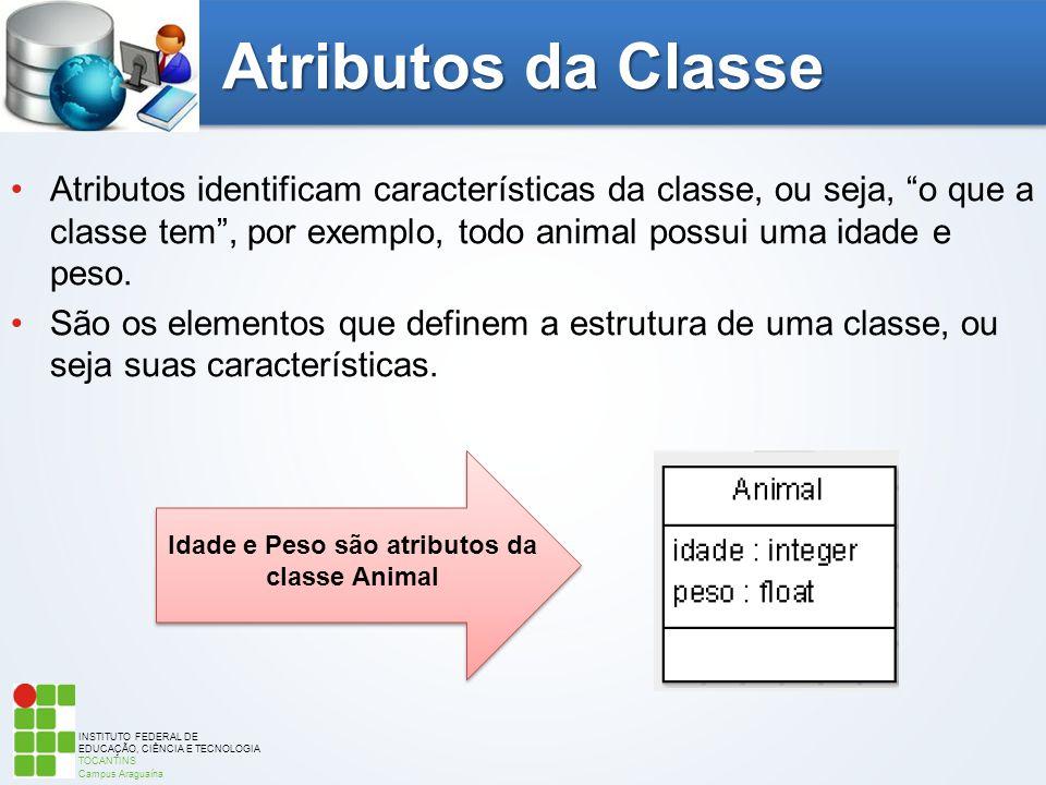 INSTITUTO FEDERAL DE EDUCAÇÃO, CIÊNCIA E TECNOLOGIA TOCANTINS Campus Araguaína Atributos da Classe Atributos identificam características da classe, ou