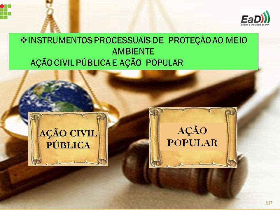  INSTRUMENTOS PROCESSUAIS DE PROTEÇÃO AO MEIO AMBIENTE AÇÃO CIVIL PÚBLICA E AÇÃO POPULAR 117