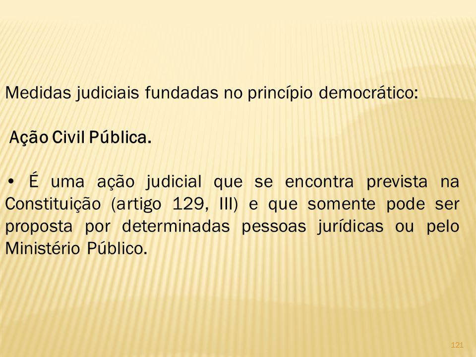 Medidas judiciais fundadas no princípio democrático: Ação Civil Pública.