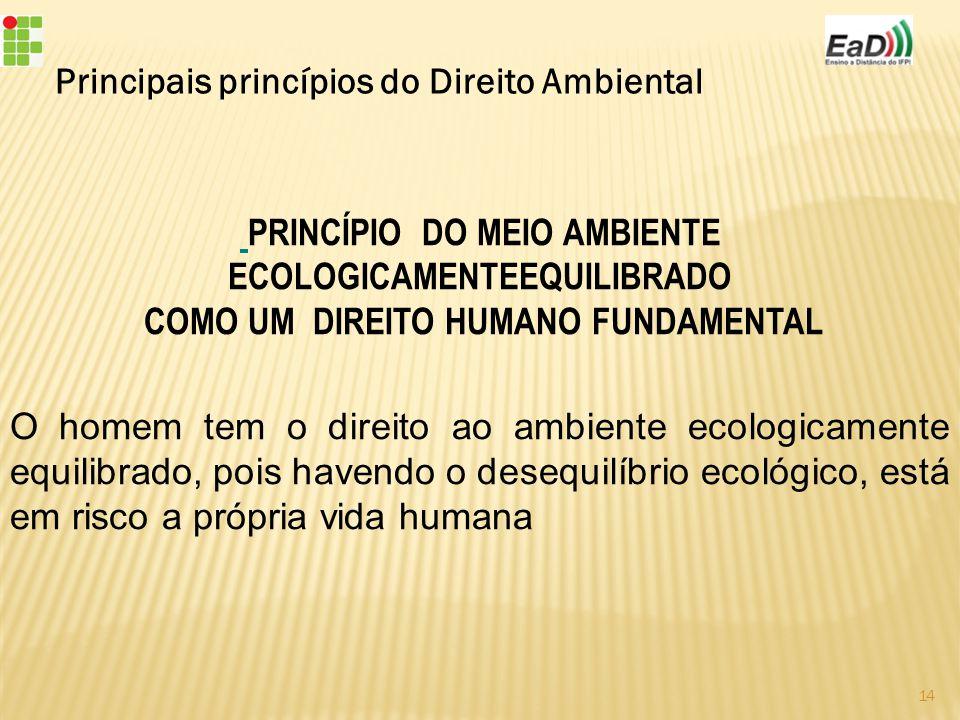 Principais princípios do Direito Ambiental PRINCÍPIO DO MEIO AMBIENTE ECOLOGICAMENTEEQUILIBRADO COMO UM DIREITO HUMANO FUNDAMENTAL O homem tem o direito ao ambiente ecologicamente equilibrado, pois havendo o desequilíbrio ecológico, está em risco a própria vida humana 14