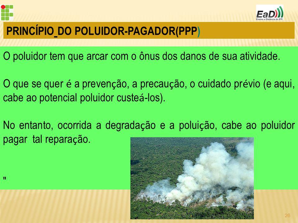 PRINCÍPIO DO POLUIDOR-PAGADOR(PPP) O poluidor tem que arcar com o ônus dos danos de sua atividade.