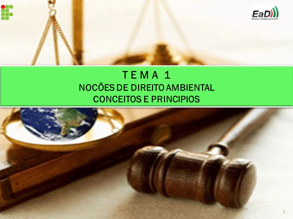T E M A 1 NOCÕES DE DIREITO AMBIENTAL CONCEITOS E PRINCIPIOS T E M A 1 NOCÕES DE DIREITO AMBIENTAL CONCEITOS E PRINCIPIOS 3