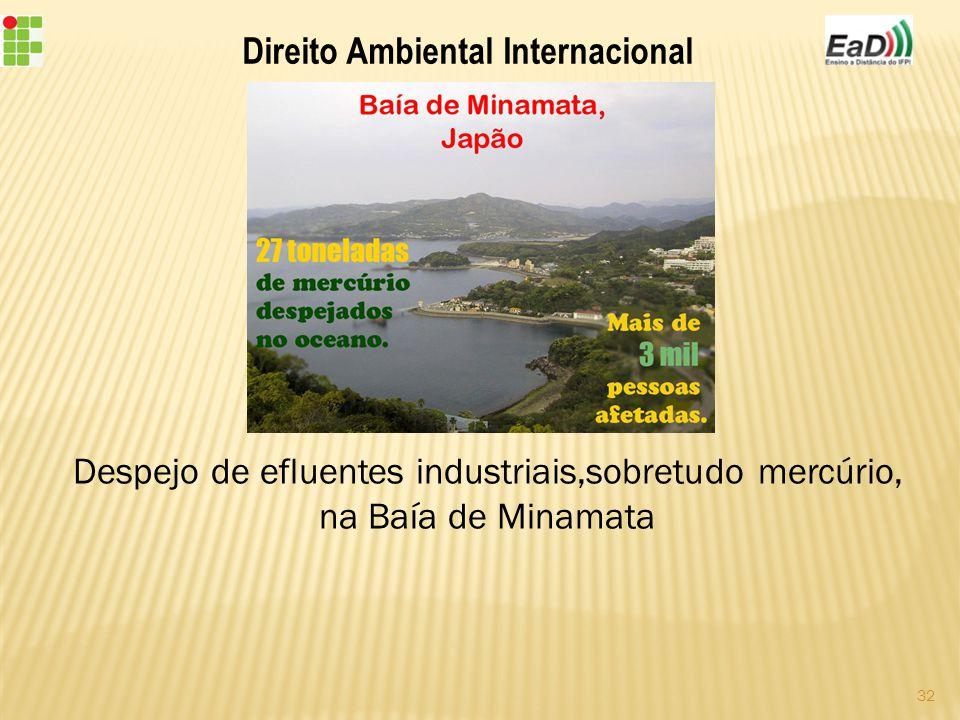 Direito Ambiental Internacional Despejo de efluentes industriais,sobretudo mercúrio, na Baía de Minamata 32
