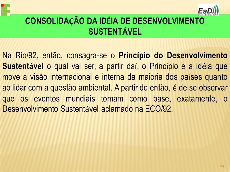 Na Rio/92, então, consagra-se o Princ í pio do Desenvolvimento Sustent á vel o qual vai ser, a partir da í, o Princ í pio e a id é ia que move a visão internacional e interna da maioria dos pa í ses quanto ao lidar com a questão ambiental.
