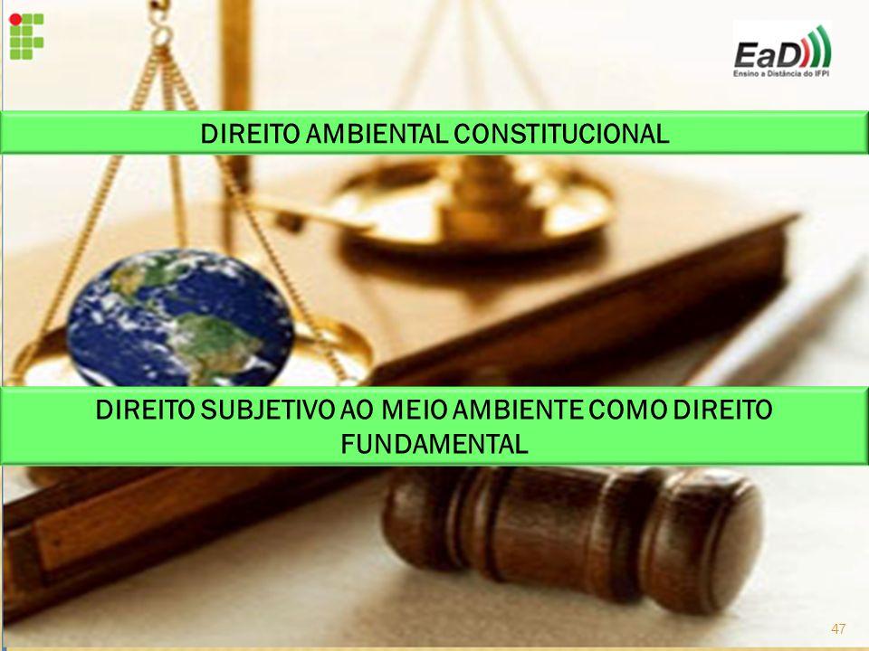 DIREITO SUBJETIVO AO MEIO AMBIENTE COMO DIREITO FUNDAMENTAL DIREITO AMBIENTAL CONSTITUCIONAL 47