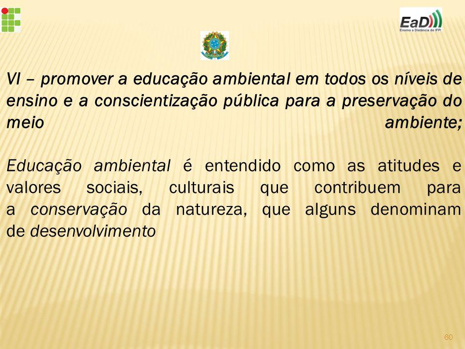 VI – promover a educação ambiental em todos os níveis de ensino e a conscientização pública para a preservação do meio ambiente; Educação ambiental é entendido como as atitudes e valores sociais, culturais que contribuem para a conservação da natureza, que alguns denominam de desenvolvimento 60