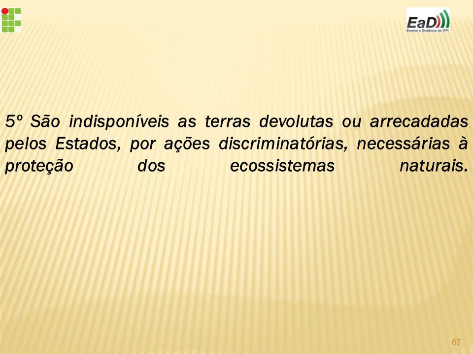 5º São indisponíveis as terras devolutas ou arrecadadas pelos Estados, por ações discriminatórias, necessárias à proteção dos ecossistemas naturais.