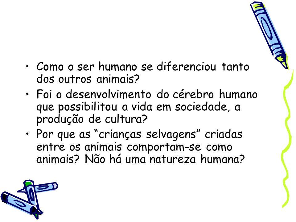 Como o ser humano se diferenciou tanto dos outros animais.