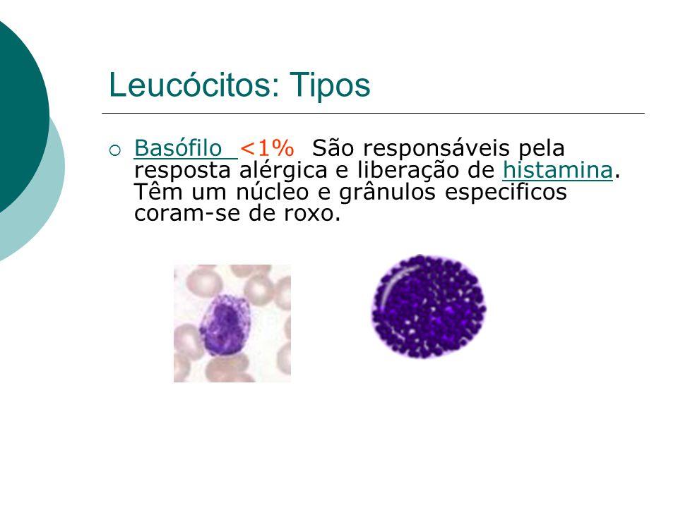 Leucócitos: Tipos  Basófilo <1% São responsáveis pela resposta alérgica e liberação de histamina. Têm um núcleo e grânulos especificos coram-se de ro