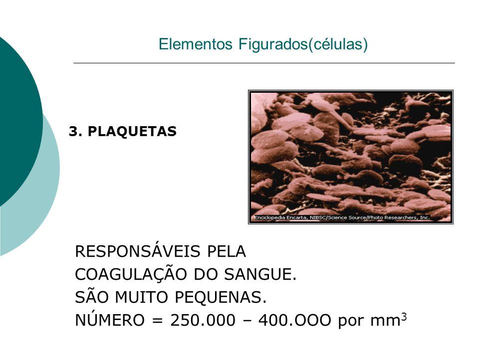 Elementos Figurados(células) RESPONSÁVEIS PELA COAGULAÇÃO DO SANGUE. SÃO MUITO PEQUENAS. NÚMERO = 250.000 – 400.OOO por mm 3 3. PLAQUETAS