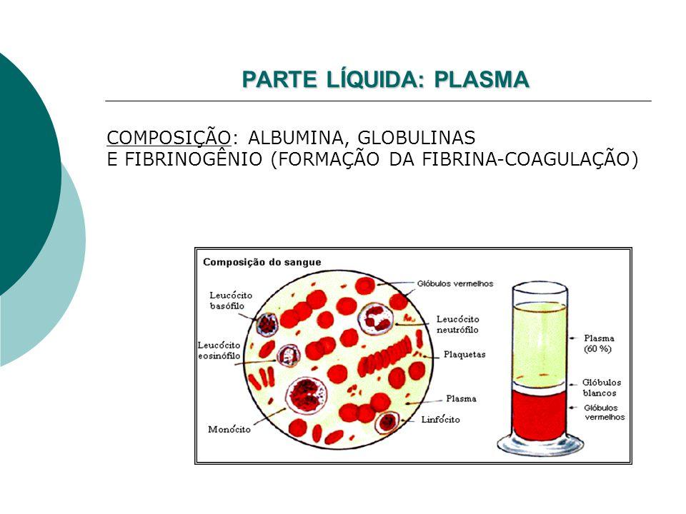 PARTE LÍQUIDA:PLASMA PARTE LÍQUIDA: PLASMA COMPOSIÇÃO: ALBUMINA, GLOBULINAS E FIBRINOGÊNIO (FORMAÇÃO DA FIBRINA-COAGULAÇÃO)