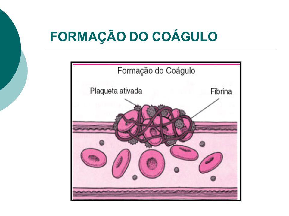 FORMAÇÃO DO COÁGULO