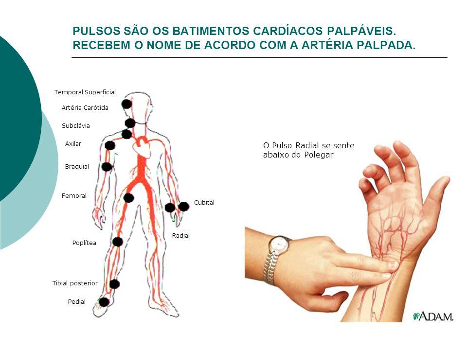 PULSOS SÃO OS BATIMENTOS CARDÍACOS PALPÁVEIS. RECEBEM O NOME DE ACORDO COM A ARTÉRIA PALPADA. Temporal Superficial Artéria Carótida Subclávia Axilar B