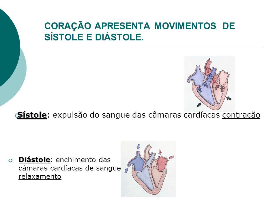 CORAÇÃO APRESENTA MOVIMENTOS DE SÍSTOLE E DIÁSTOLE.  Diástole  Diástole: enchimento das câmaras cardíacas de sangue relaxamento  Sístole  Sístole: