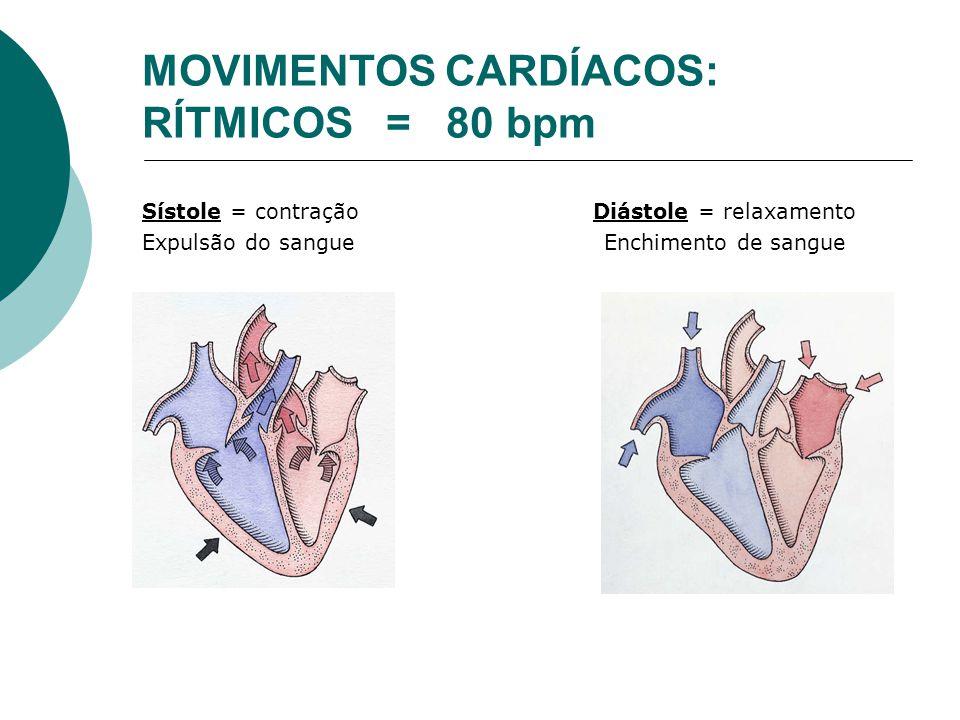 MOVIMENTOS CARDÍACOS: RÍTMICOS = 80 bpm Sístole = contração Diástole = relaxamento Expulsão do sangue Enchimento de sangue