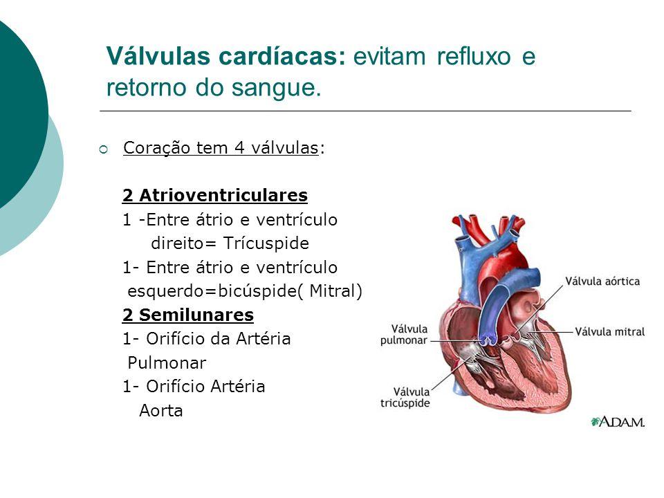 Válvulas cardíacas: evitam refluxo e retorno do sangue.  Coração tem 4 válvulas: 2 Atrioventriculares 1 -Entre átrio e ventrículo direito= Trícuspide
