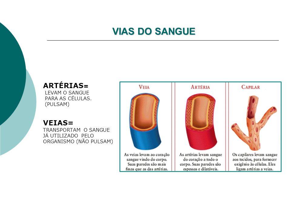 ELEMENTOS FIGURADOS (CÉLULAS) 1.HEMÁCIAS, ERITRÓCITOS OU GLÓBULOS VERMELHOS -SE FORMAM NA MEDULA VERMELHA DOS OSSOS LONGOS -SÃO DESTRUÍDAS (120 DIAS) NO BAÇO (bilirrubina) - VALOR= 4,5-5 milhões/ml Glóbulos Vermelhos