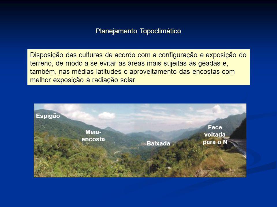 Baixada Espigão Meia- encosta Face voltada para o N Planejamento Topoclimático Disposição das culturas de acordo com a configuração e exposição do ter