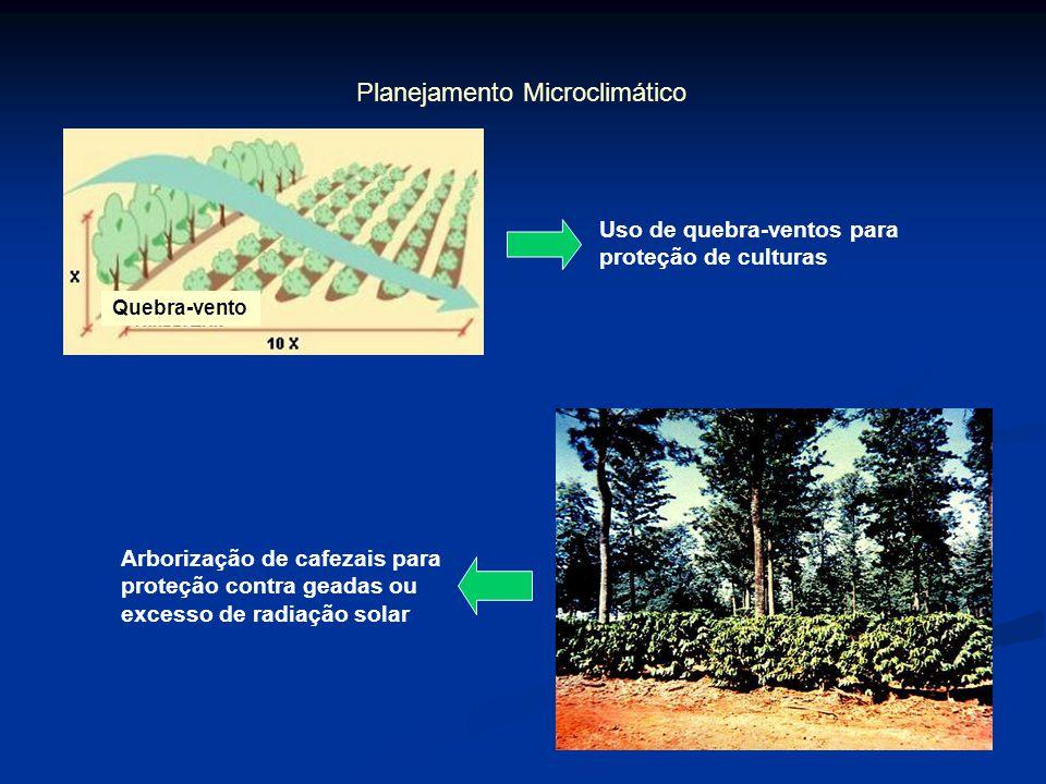 Planejamento Microclimático Quebra-vento Uso de quebra-ventos para proteção de culturas Arborização de cafezais para proteção contra geadas ou excesso