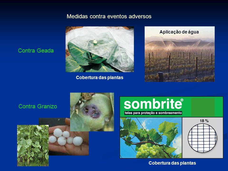 Medidas contra eventos adversos Contra Geada Cobertura das plantas Aplicação de água Contra Granizo Cobertura das plantas